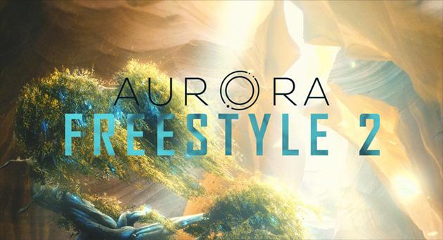 Project Aurora - Exhibit IX